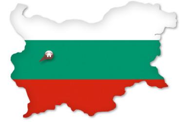 bulgaria grzyby